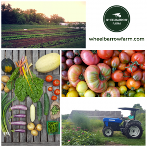 Wheelbarrow Farms CSA